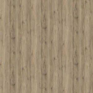 Kaindl 34141 RV/RV Sanremo bronz tölgy